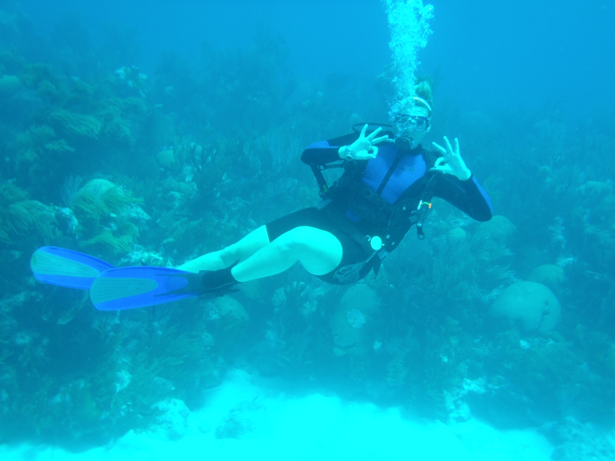 Diving in Bermud