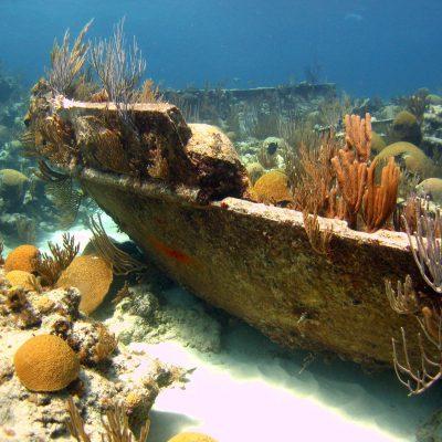 Shipwrecks!